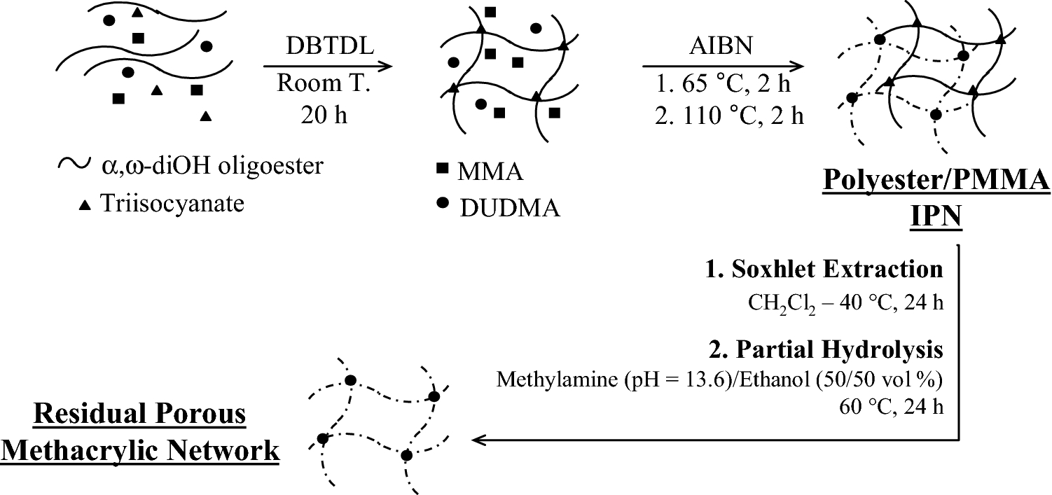 Oligoester-Derivatized (Semi-)Interpenetrating Polymer Networks as