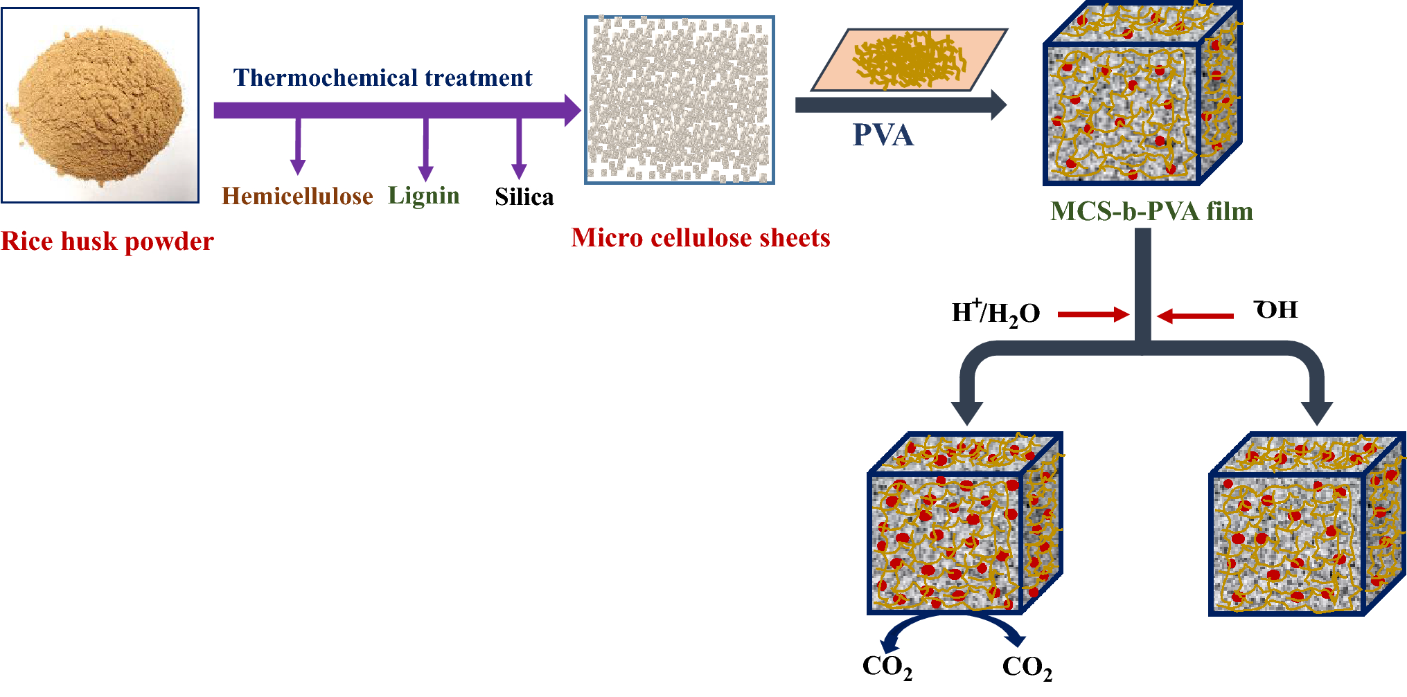 Micro-cellulose Sheet and Polyvinyl Alcohol Blended Film for Active