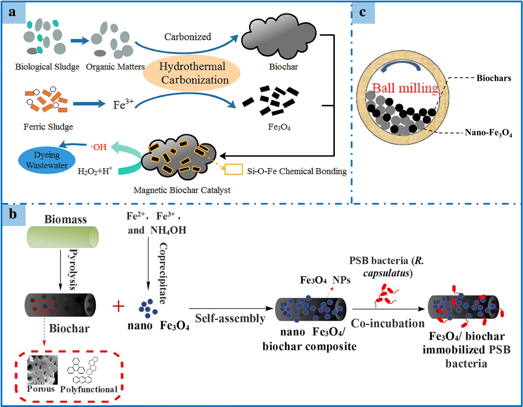 Biochar-based materials and their applications in removal of organic