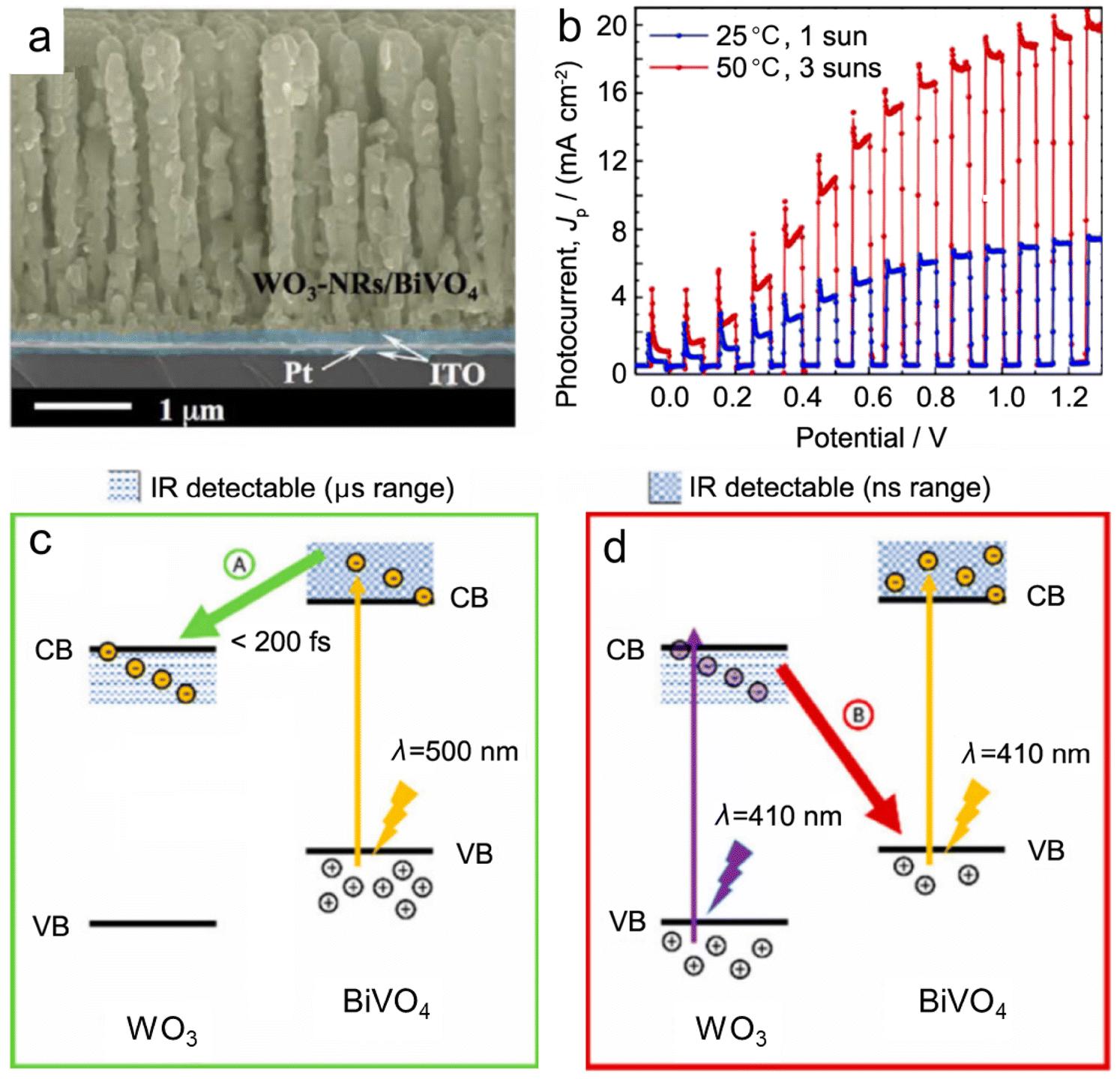 Recent progress of tungsten- and molybdenum-based