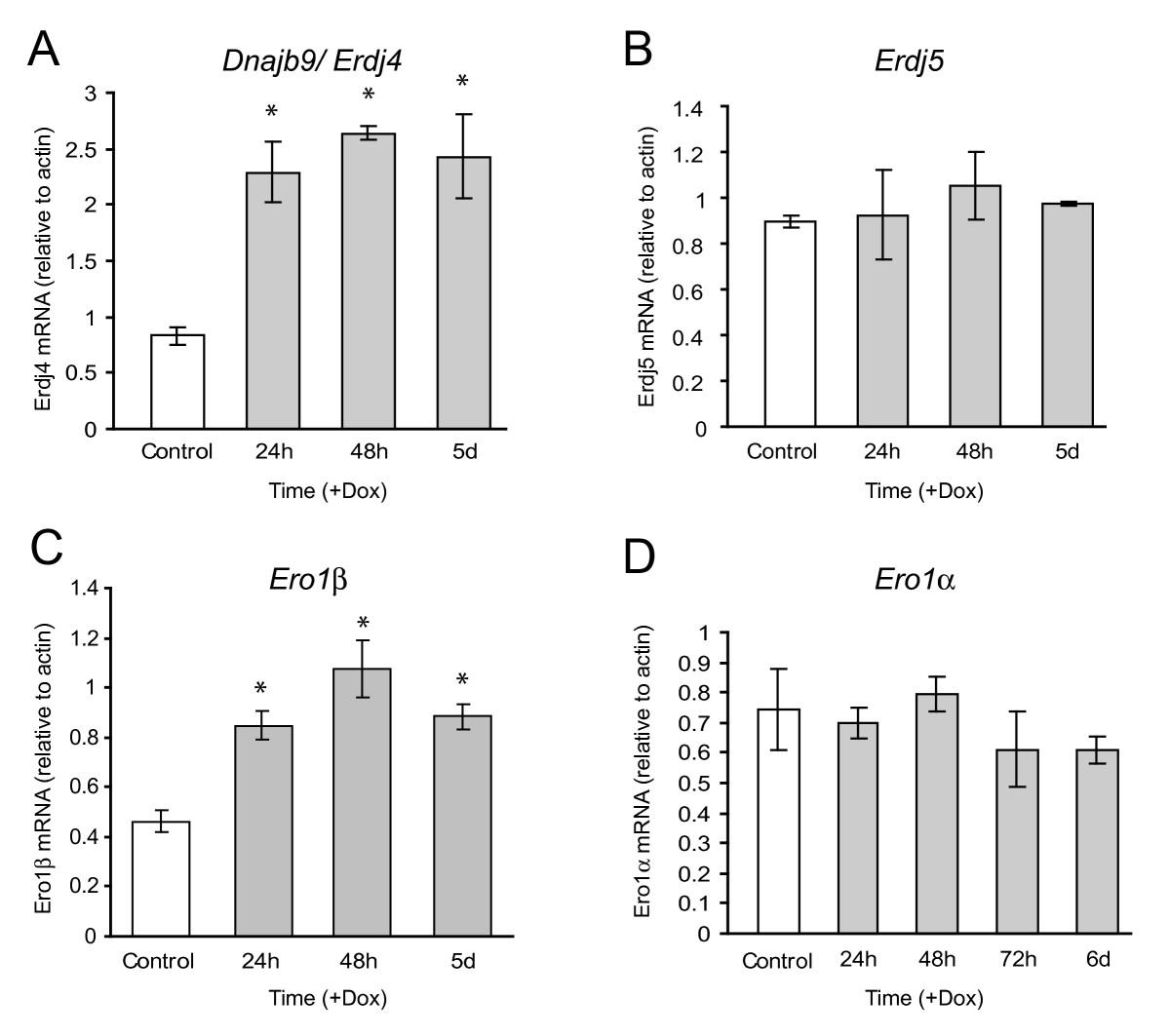 Endoplasmic reticulum stress response in an INS-1 pancreatic
