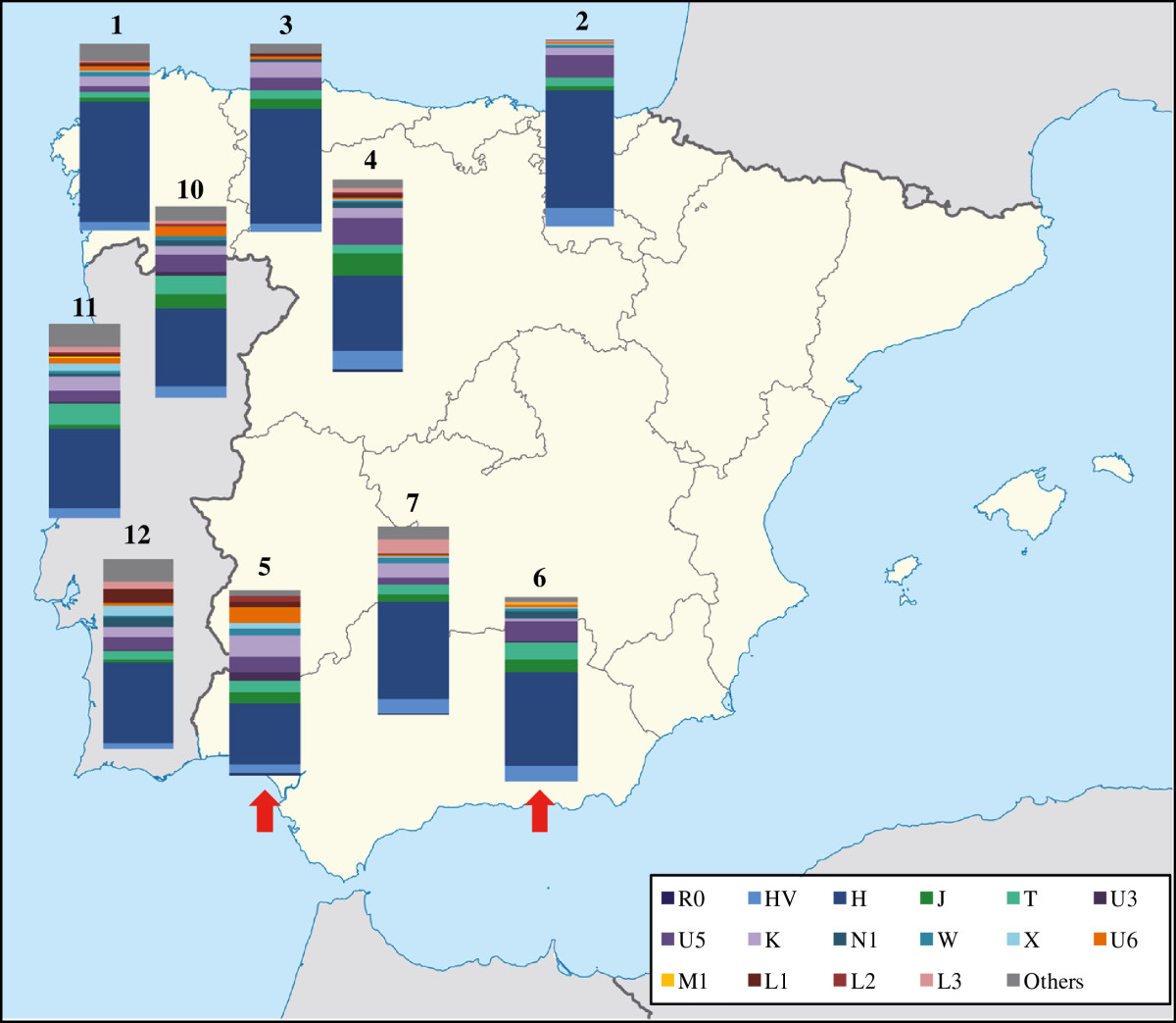Human maternal heritage in Andalusia (Spain): its