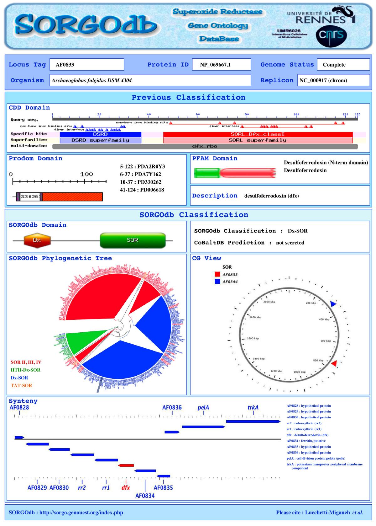 SORGOdb: Superoxide Reductase Gene Ontology curated DataBase