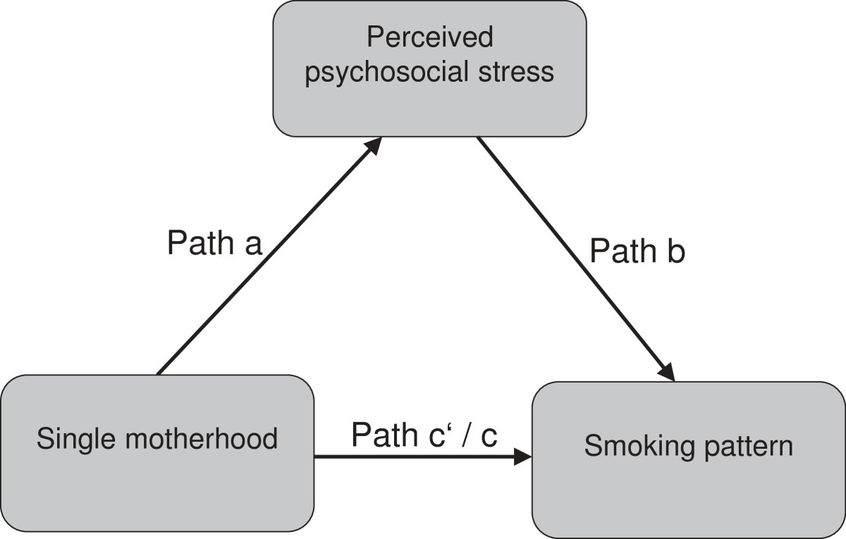 effect of single mothers stress on The parents, parents in law), (12) unwanted living alone/ decline in odds ratios from block 1 to 2 reflects the loneliness and (13) stress due to lack of appreciation influence of psychosocial stress on single mothers' (less recognition of mother-role) (see additional file 1.