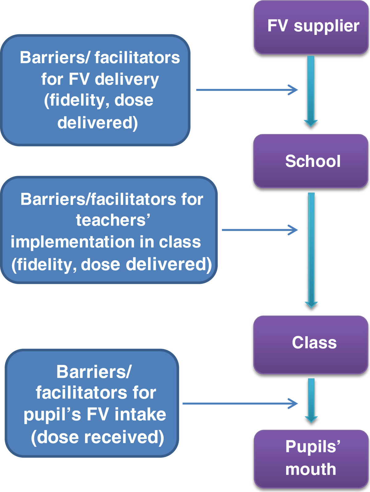 Implementing a free school-based fruit and vegetable programme ...
