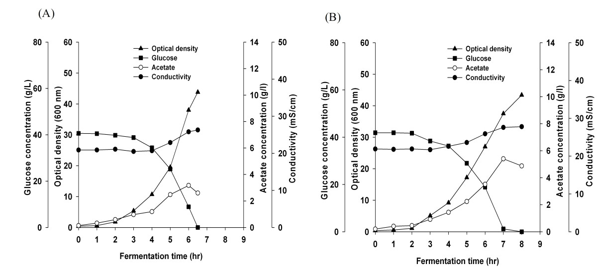 effect of salt concentration on bacterial growth