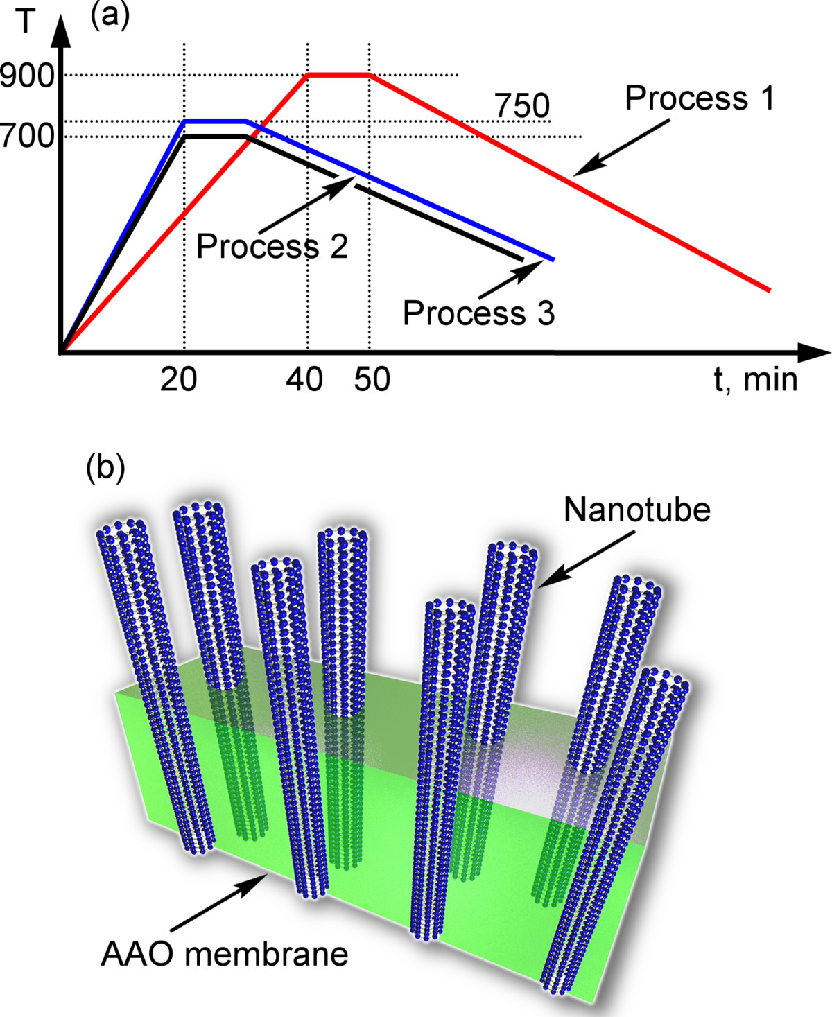 carbon nanotube processing essay Single-photon emitter has promise for quantum info-processing carbon by chemically modifying the nanotube single-photon emitter has promise.