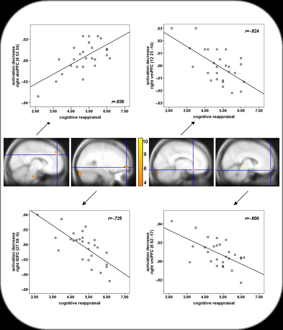 Individual differences in cognitive reappraisal usage modulate the ...