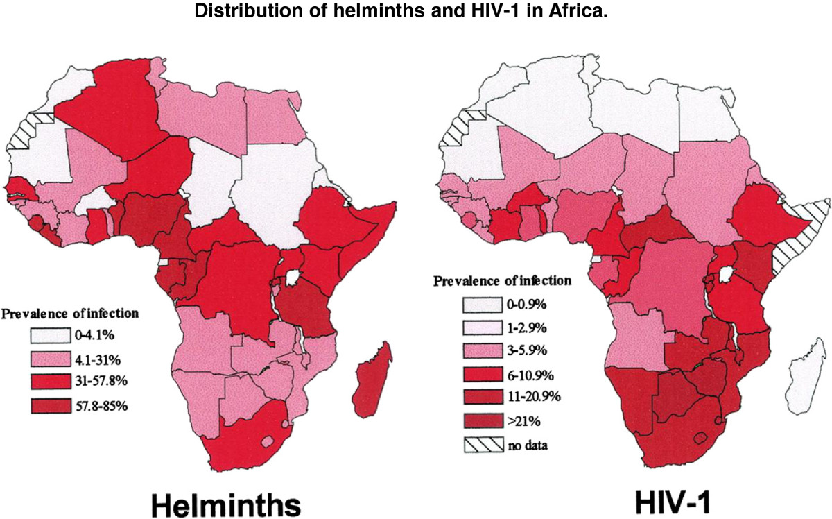 the hiv prevalence rate in sub saharan africa and its effect economic impact Sociocultural factors influencing the spread of hiv/aids in africa hiv at the end of 2011 sub-saharan africa economy recent statistics has.