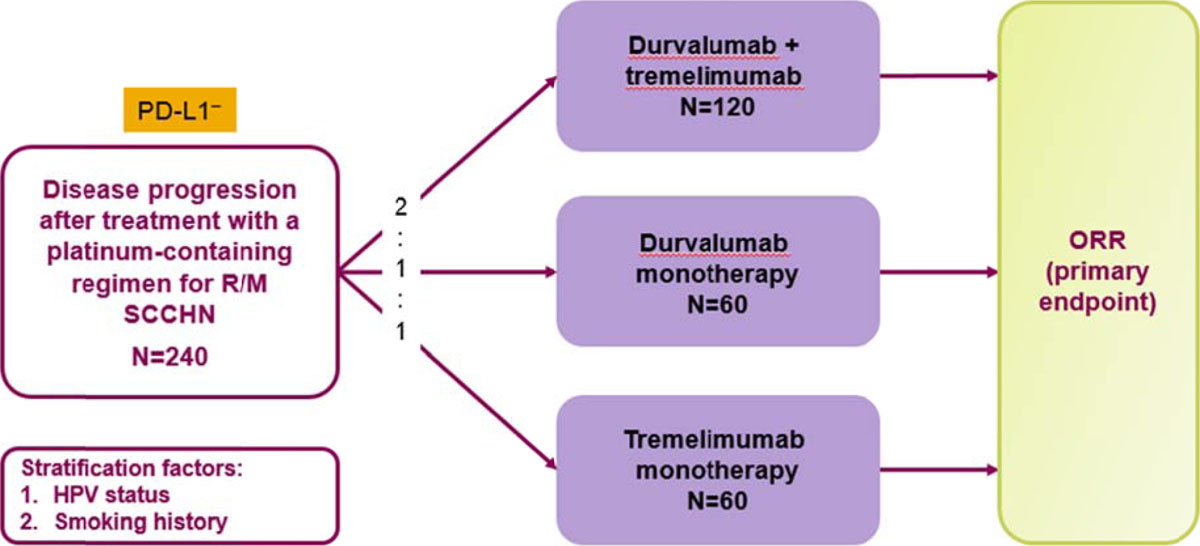 Phase Ii Randomized Open Label Study Of Durvalumab Medi Or