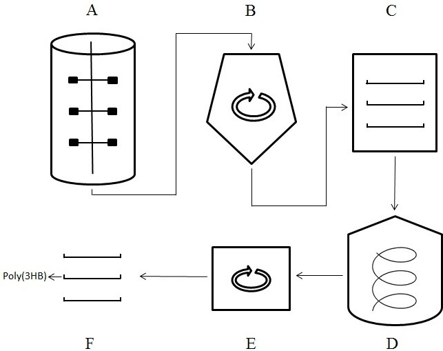 large scale extraction of poly 3