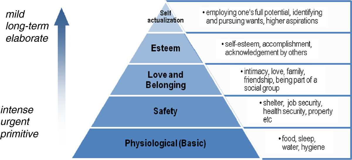 a theory of human motivation essay As described, the main thesis of the theory of human motivation is that all human needs can be arranged into a hierarchy of pre-potency, where the appearance of a certain need is connected to the satisfaction of the other, more pre-potent needs.