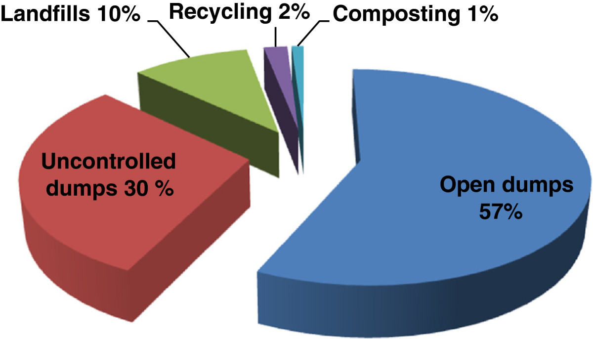 Solid waste as renewable source of energy: current and future ...