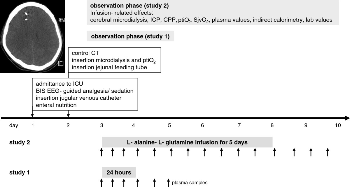 prolonged continuous intravenous infusion of the dipeptide l alanineopen image in new window