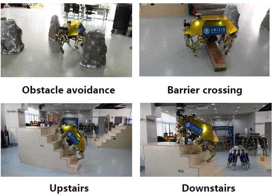 Type Design and Behavior Control for Six Legged Robots