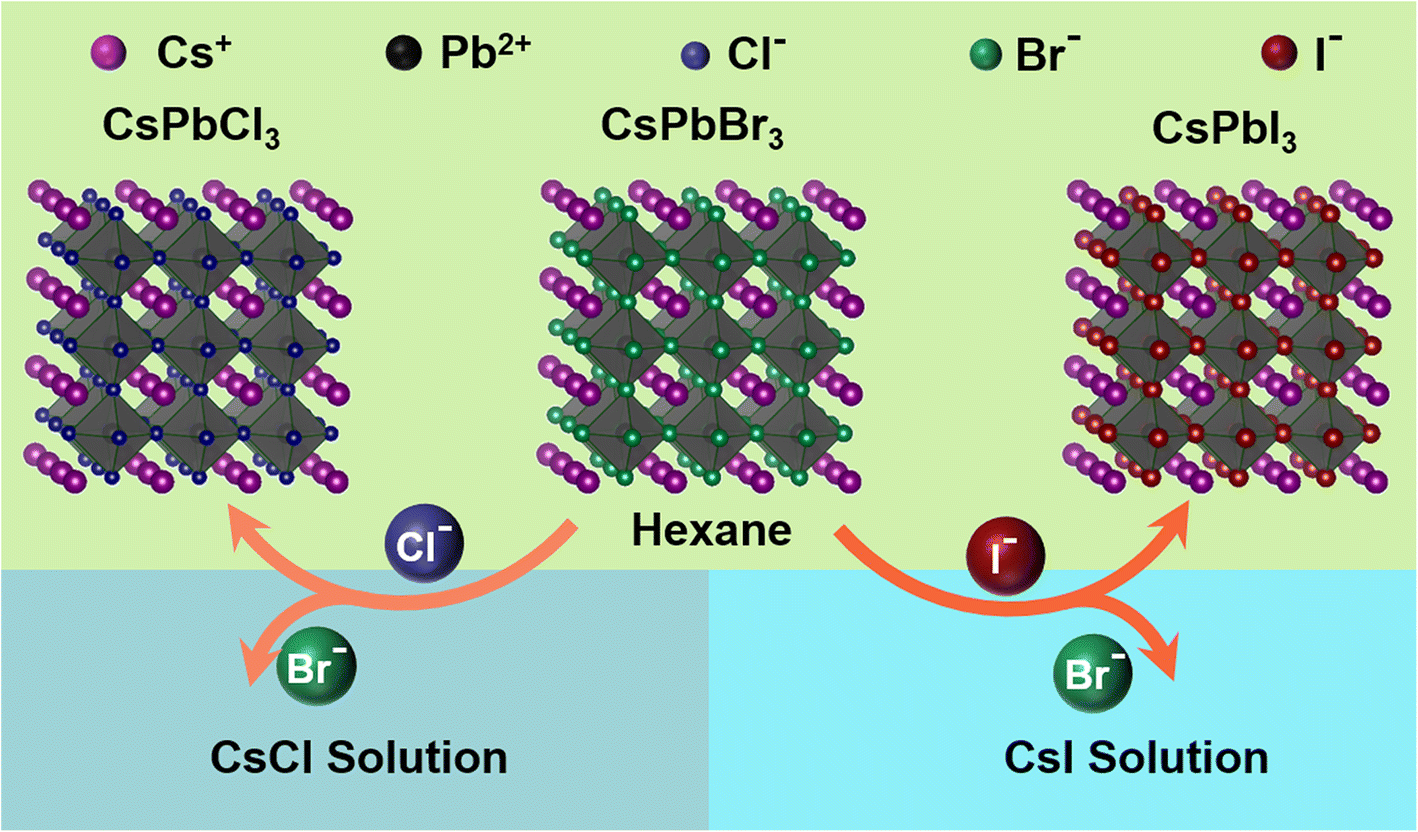 Tuning the Optical Properties of CsPbBr3 Nanocrystals by