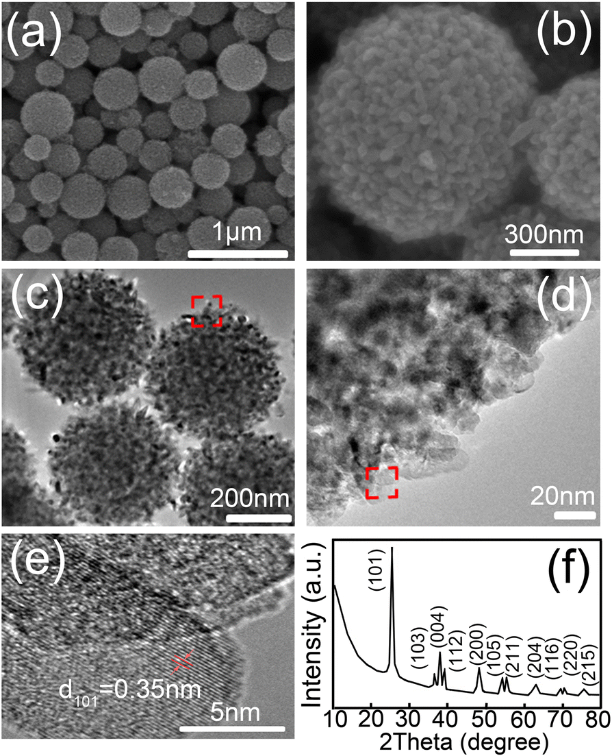 Enhanced Diffuse Reflectance and Microstructure Properties