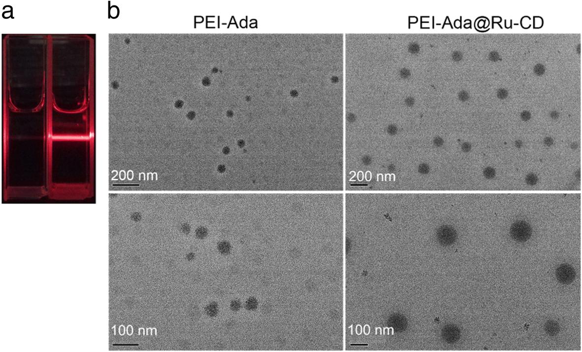 Ruthenium-containing supramolecular nanoparticles based on