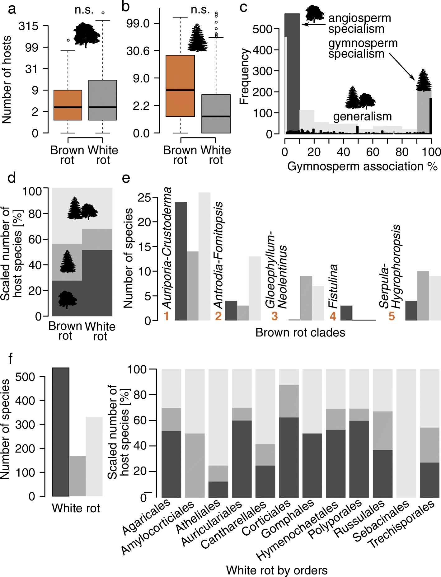 Evolutionary dynamics of host specialization in wood-decay fungi