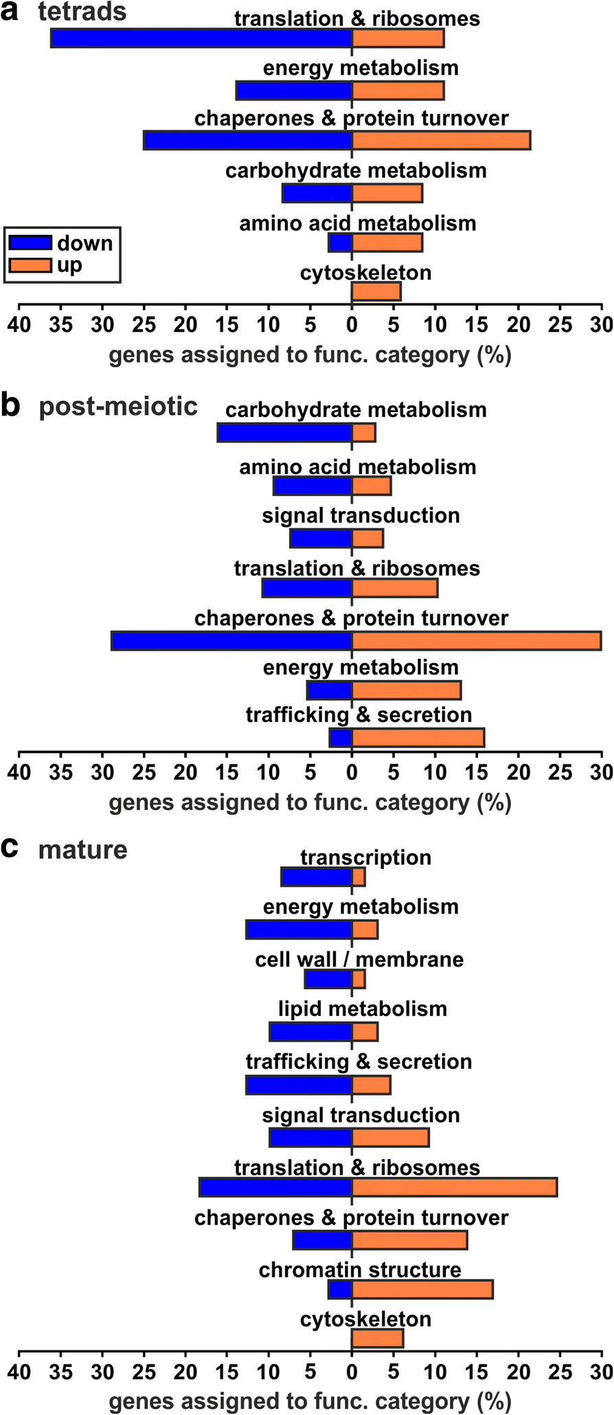 The coupling of transcriptome and proteome adaptation during