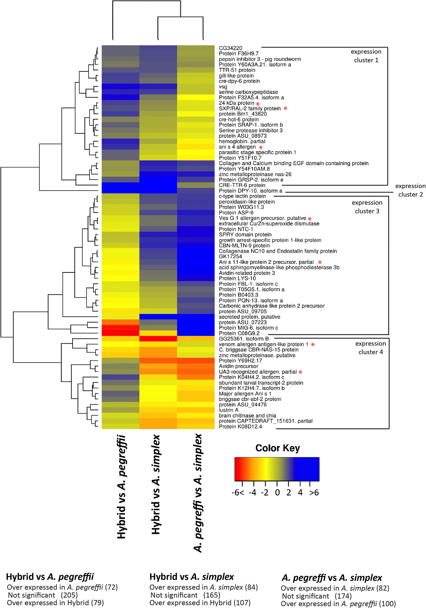 Functional insights into the infective larval stage of Anisakis