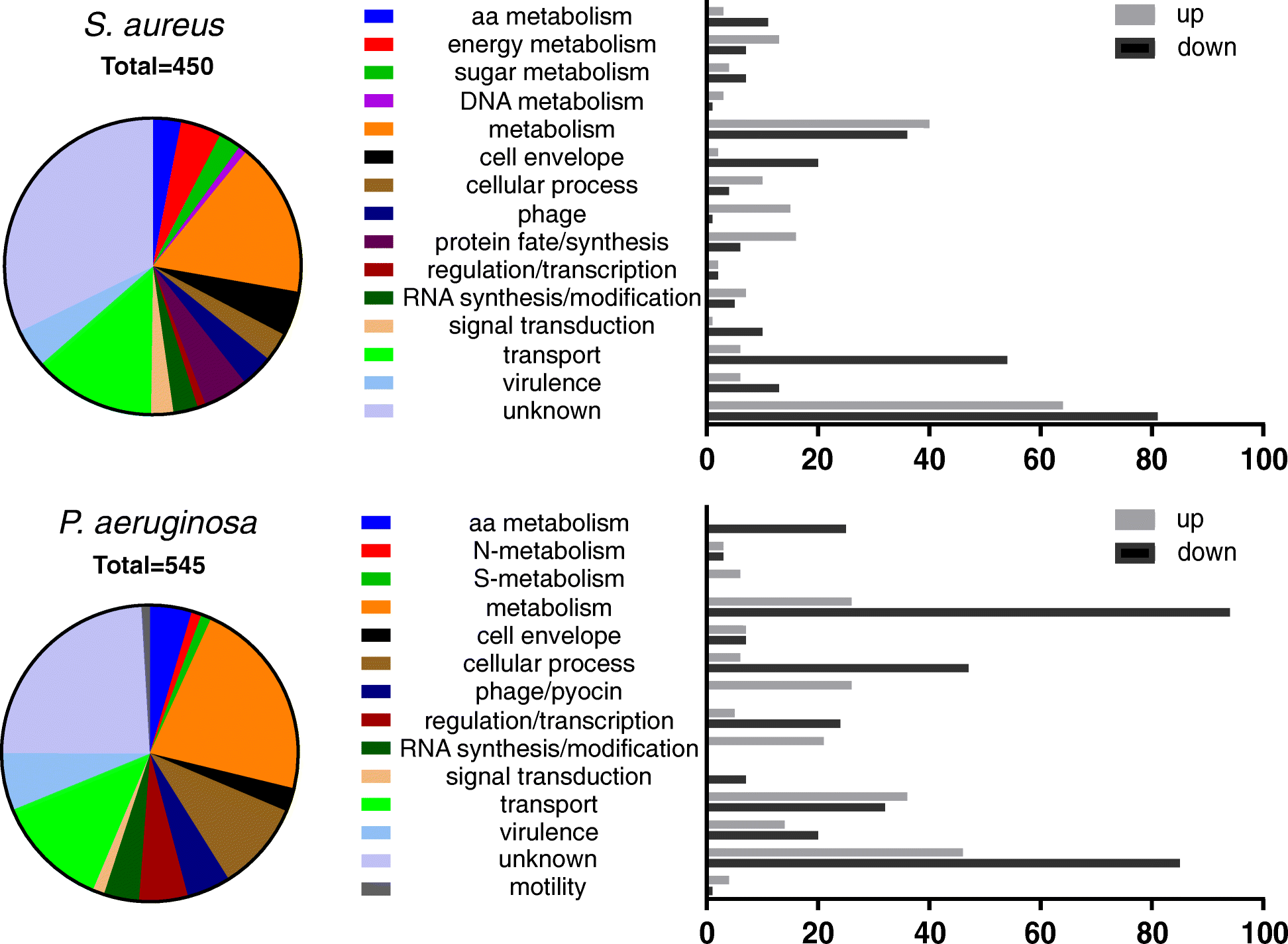 Transcriptional profiling of Pseudomonas aeruginosa and