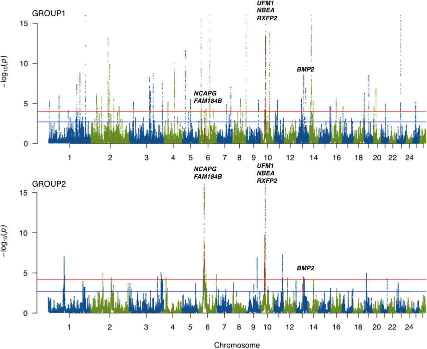High-density genotyping reveals signatures of selection related to