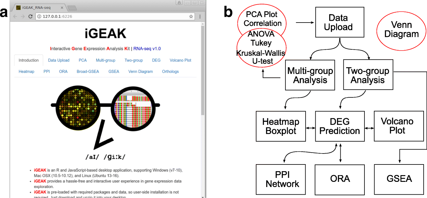 iGEAK: an interactive gene expression analysis kit for