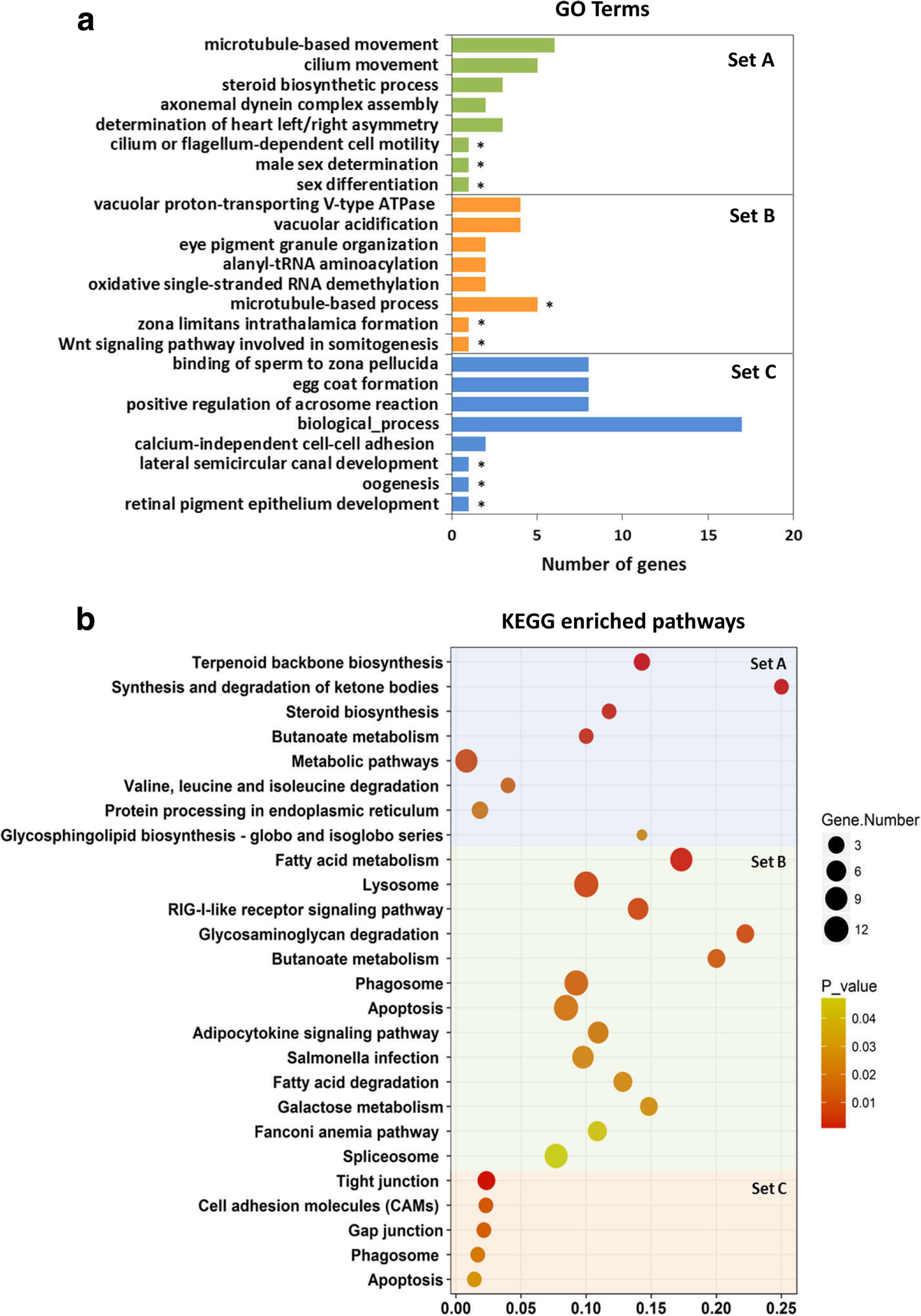 Genetic mechanism underlying sexual plasticity and its association