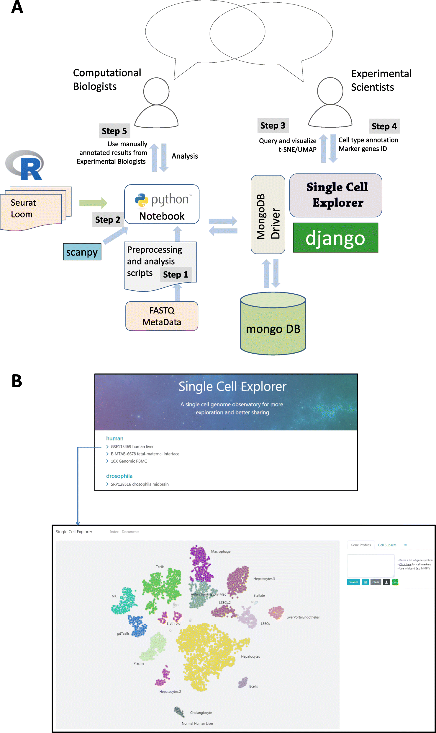 Single Cell Explorer, collaboration-driven tools to leverage