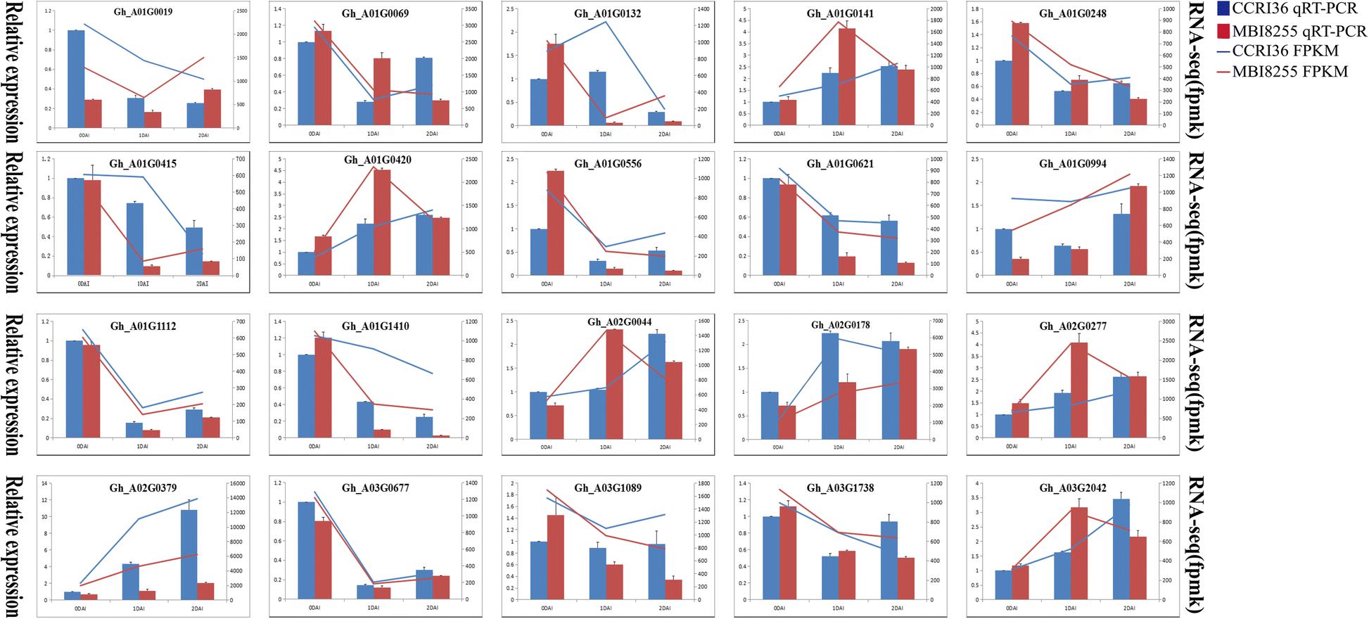 Transcriptomic and biochemical analysis of upland cotton ( Gossypium