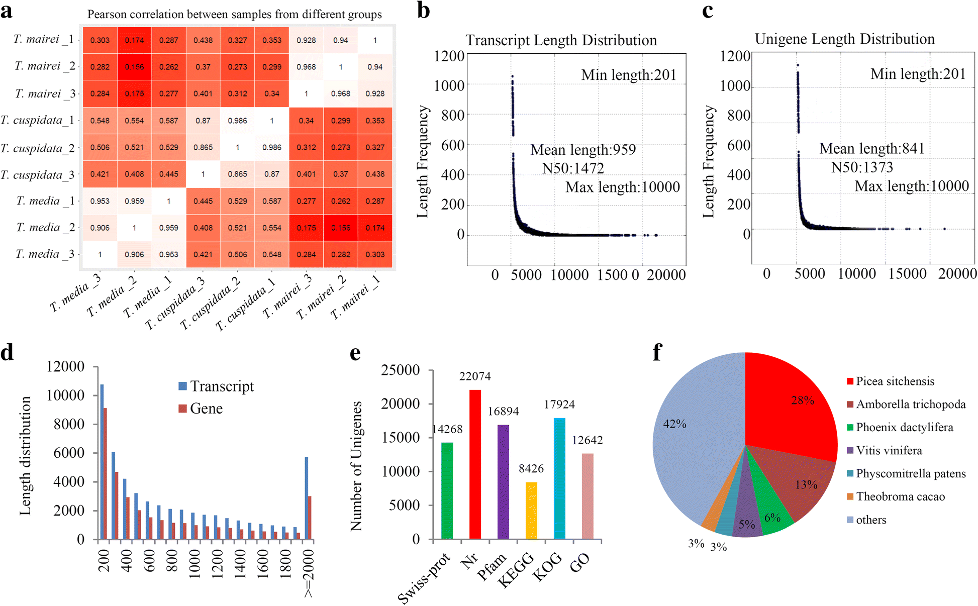 Transcriptome analyses provide insights into the expression