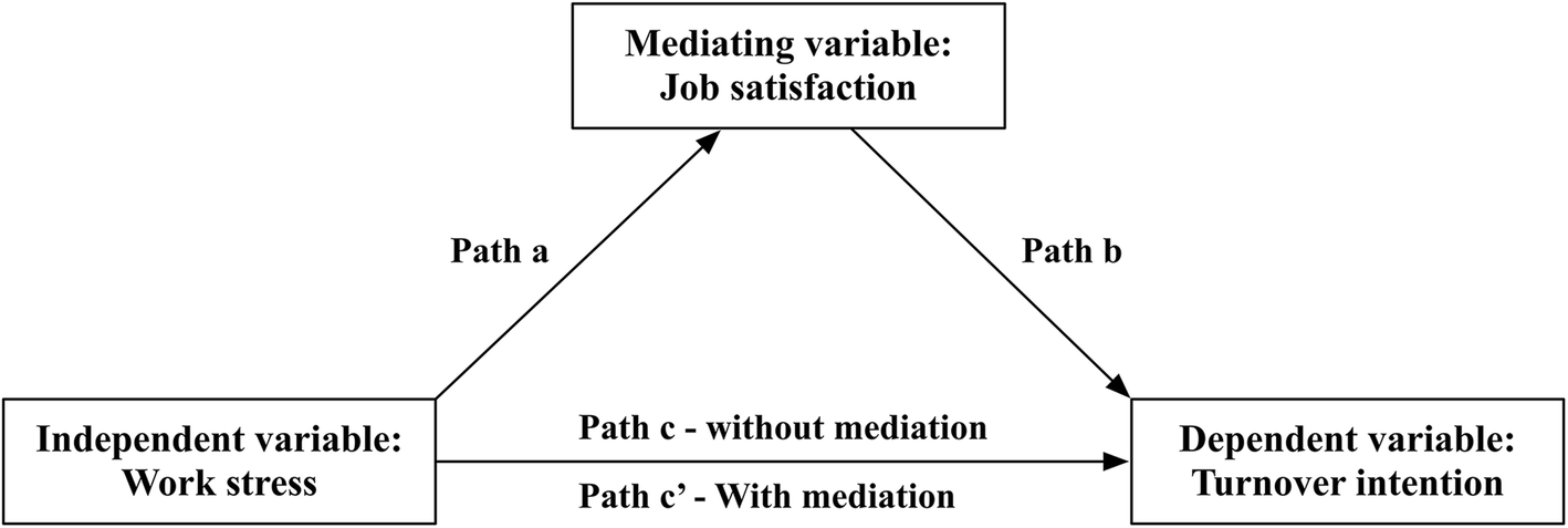 Job satisfaction, work stress, and turnover intentions among rural