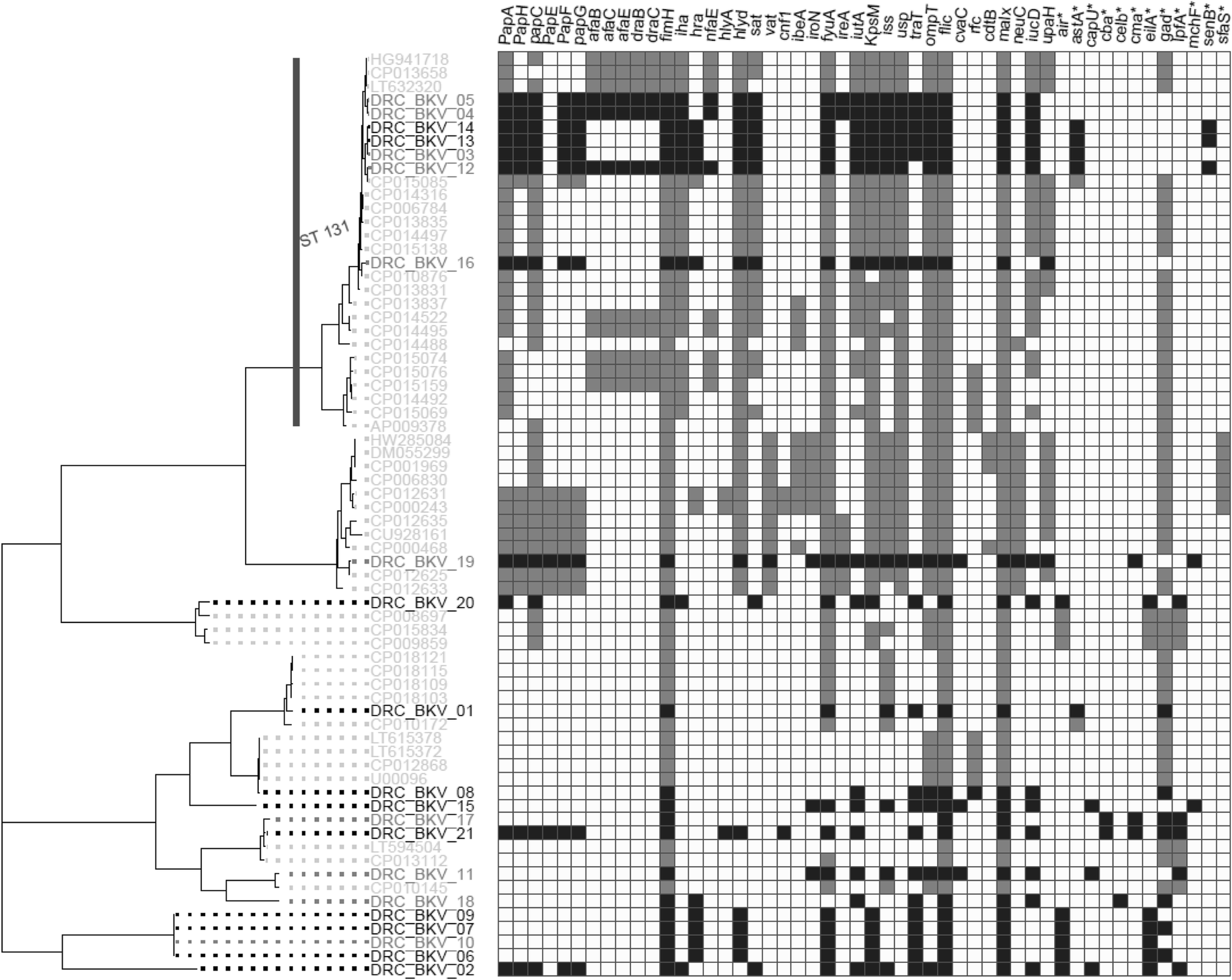 Whole-genome sequences of multidrug-resistant Escherichia