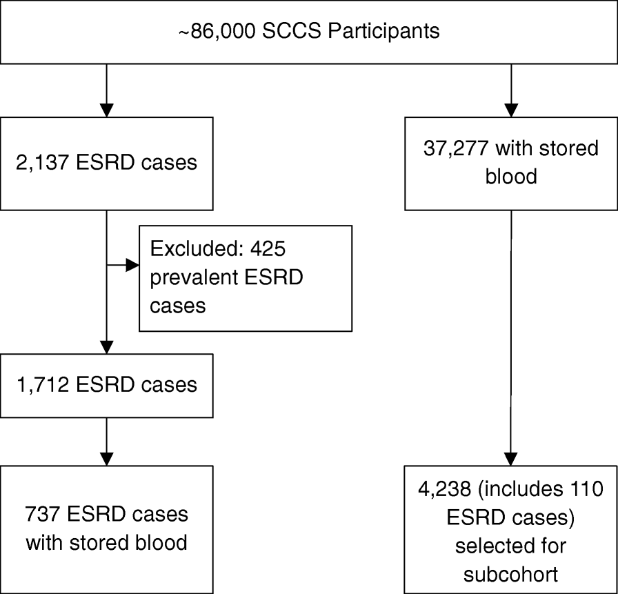 Racial disparities in end-stage renal disease in a high-risk