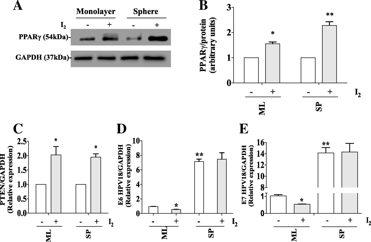 Molecular Iodine Inhibits The Expression Of Stemness Markers