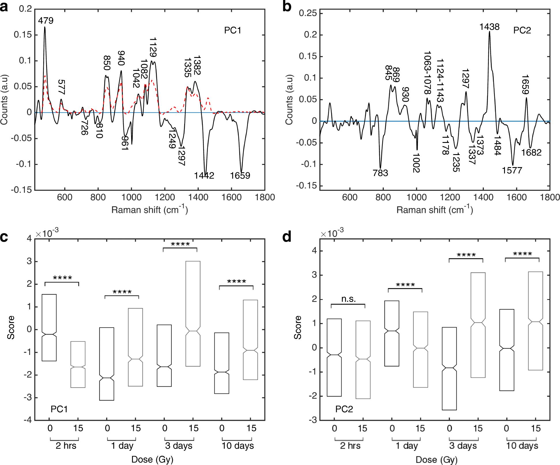Raman spectroscopy detects metabolic signatures of radiation
