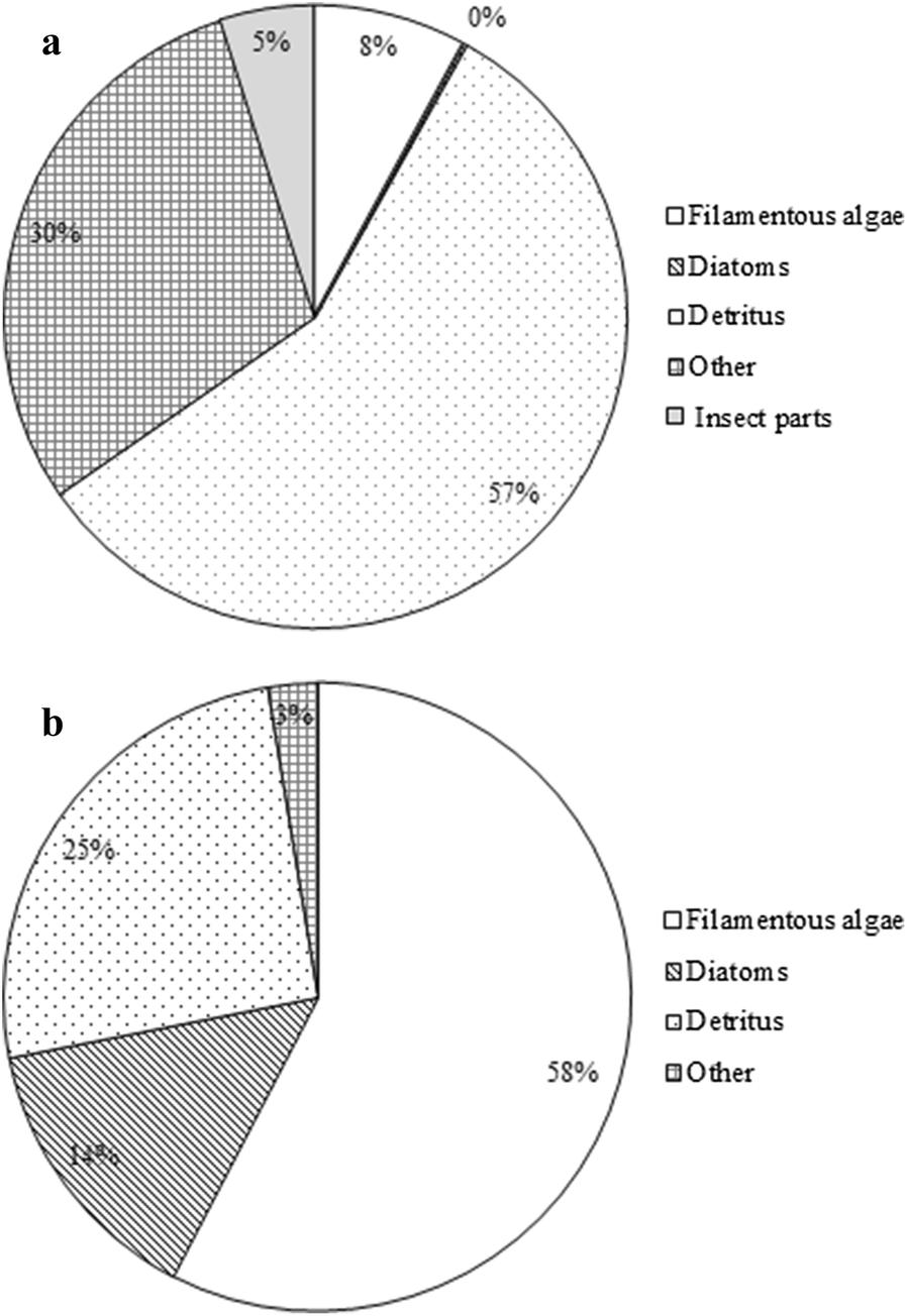 A comparison of the larvivorous habits of exotic Poecilia reticulata