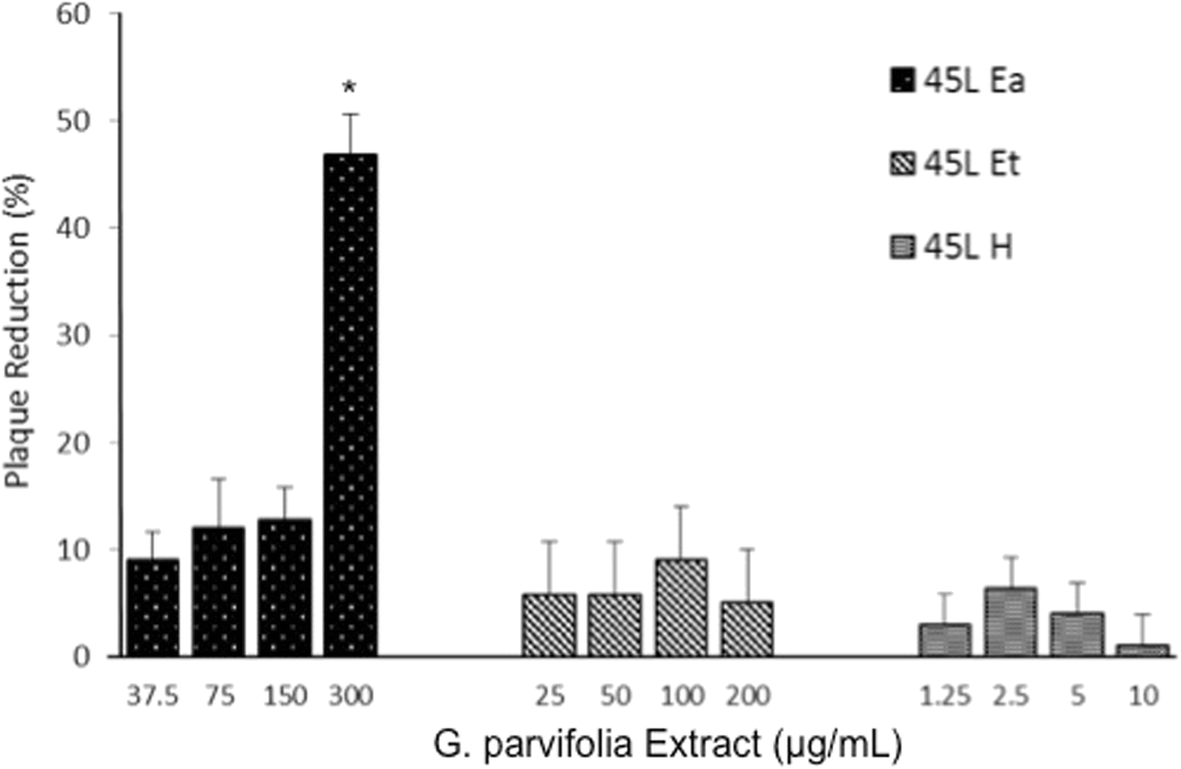 Virucidal activity of Garcinia parvifolia leaf extracts in