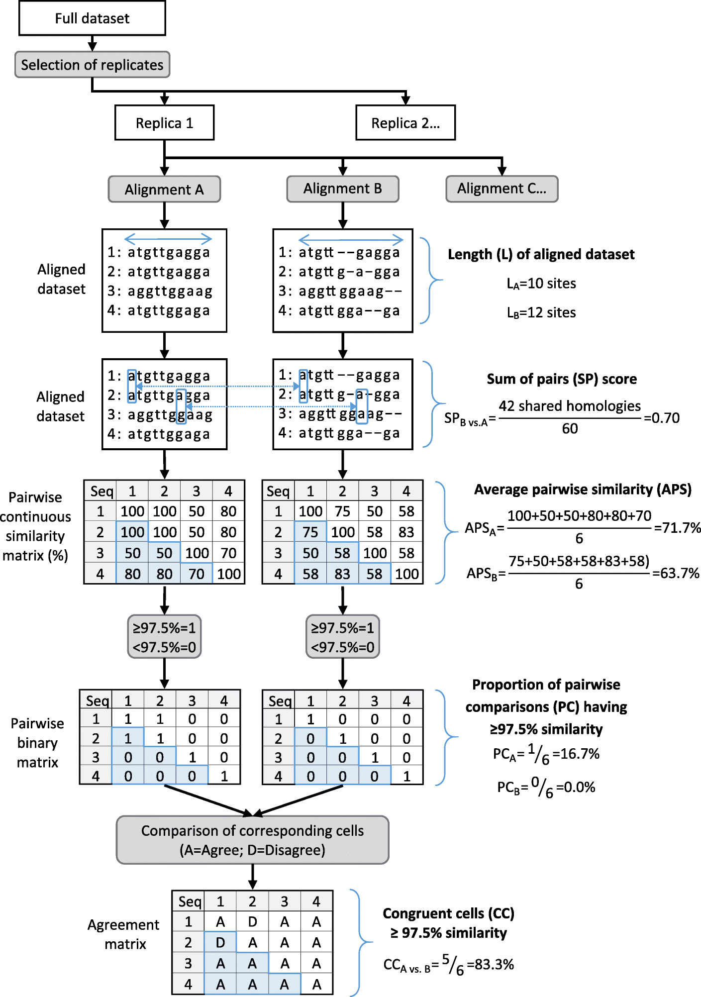 Impact of alignment algorithm on the estimation of pairwise