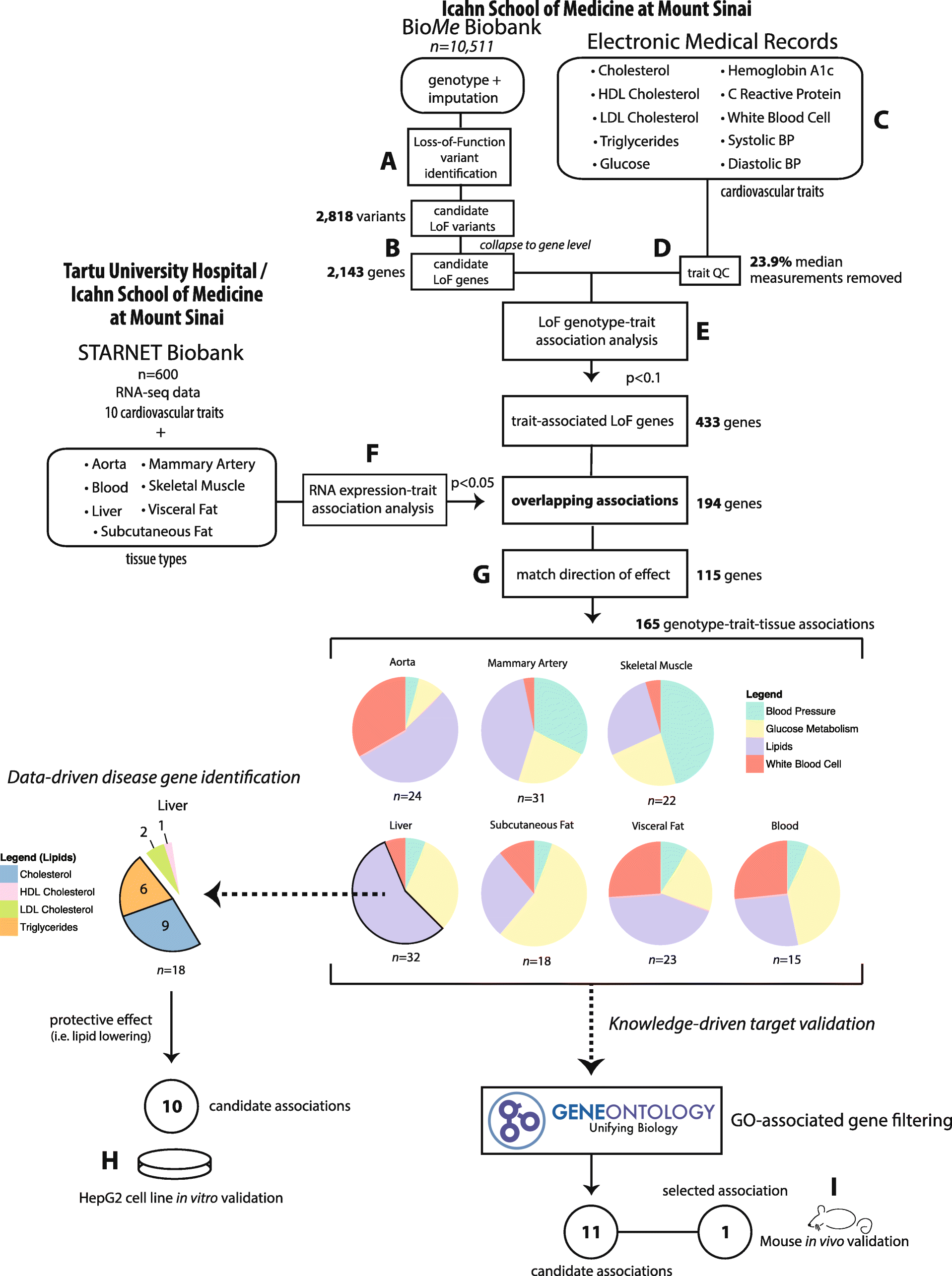 Integrative analysis of loss-of-function variants in