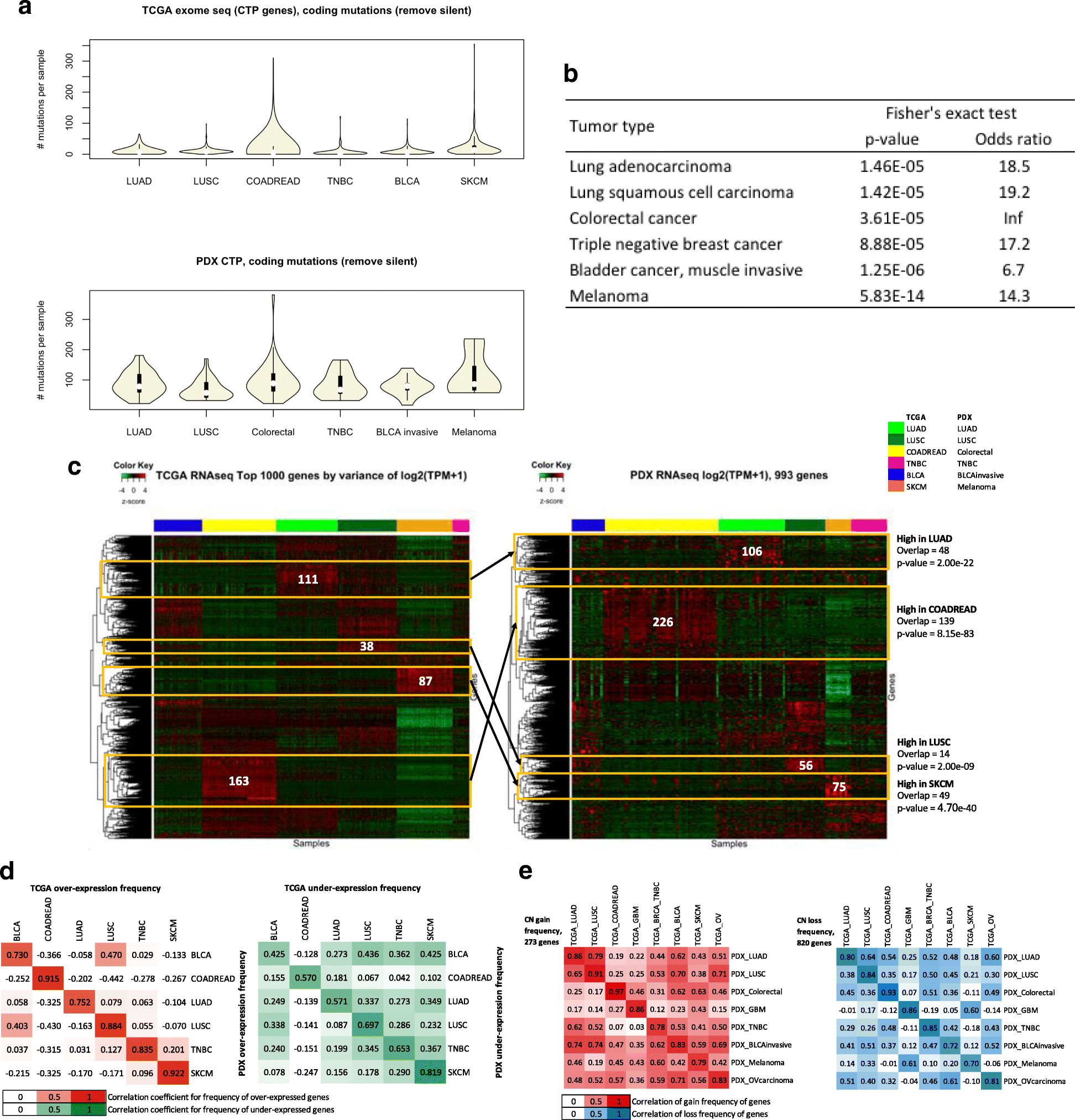 Genomic data analysis workflows for tumors from patient-derived