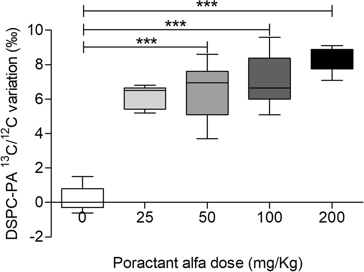 Tracing exogenous surfactant in vivo in rabbits by the