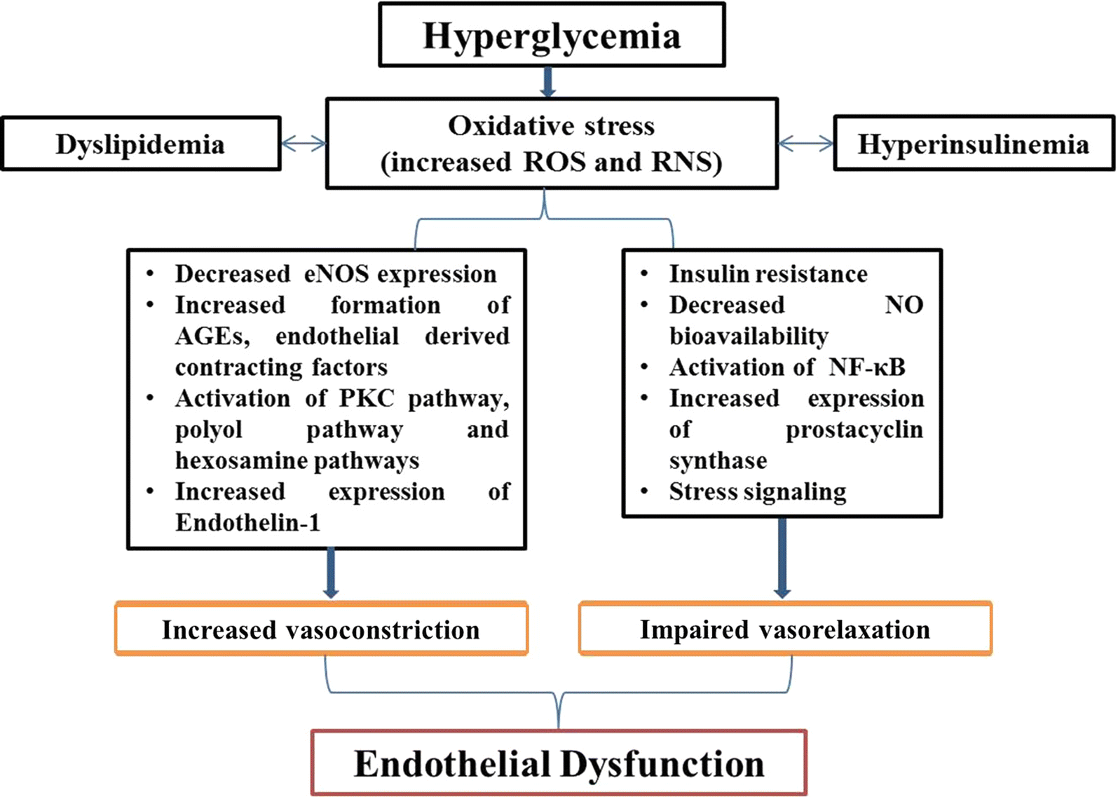 Endothelial dysfunction and platelet hyperactivity in type 2