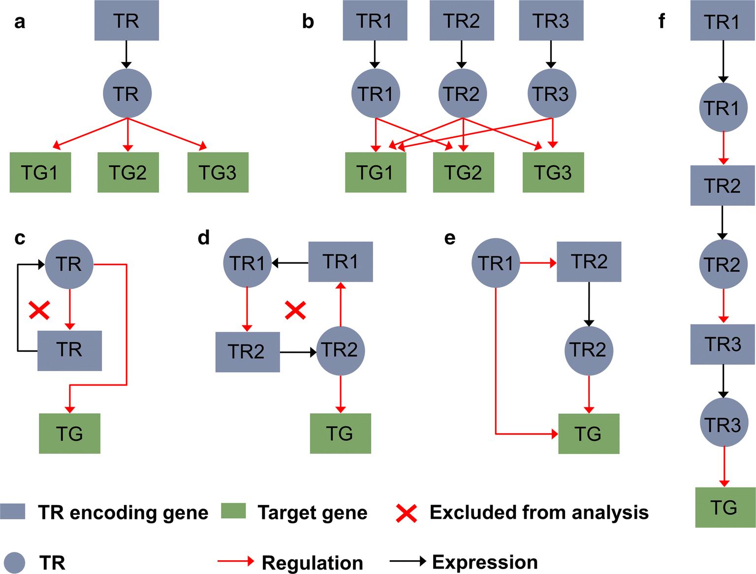 In silico model-guided identification of transcriptional regulator