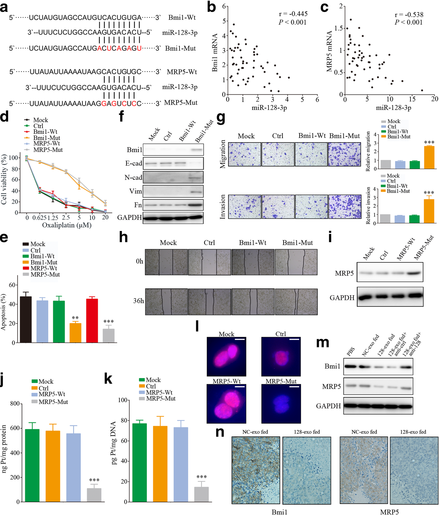 Exosome-transmitted miR-128-3p increase chemosensitivity of