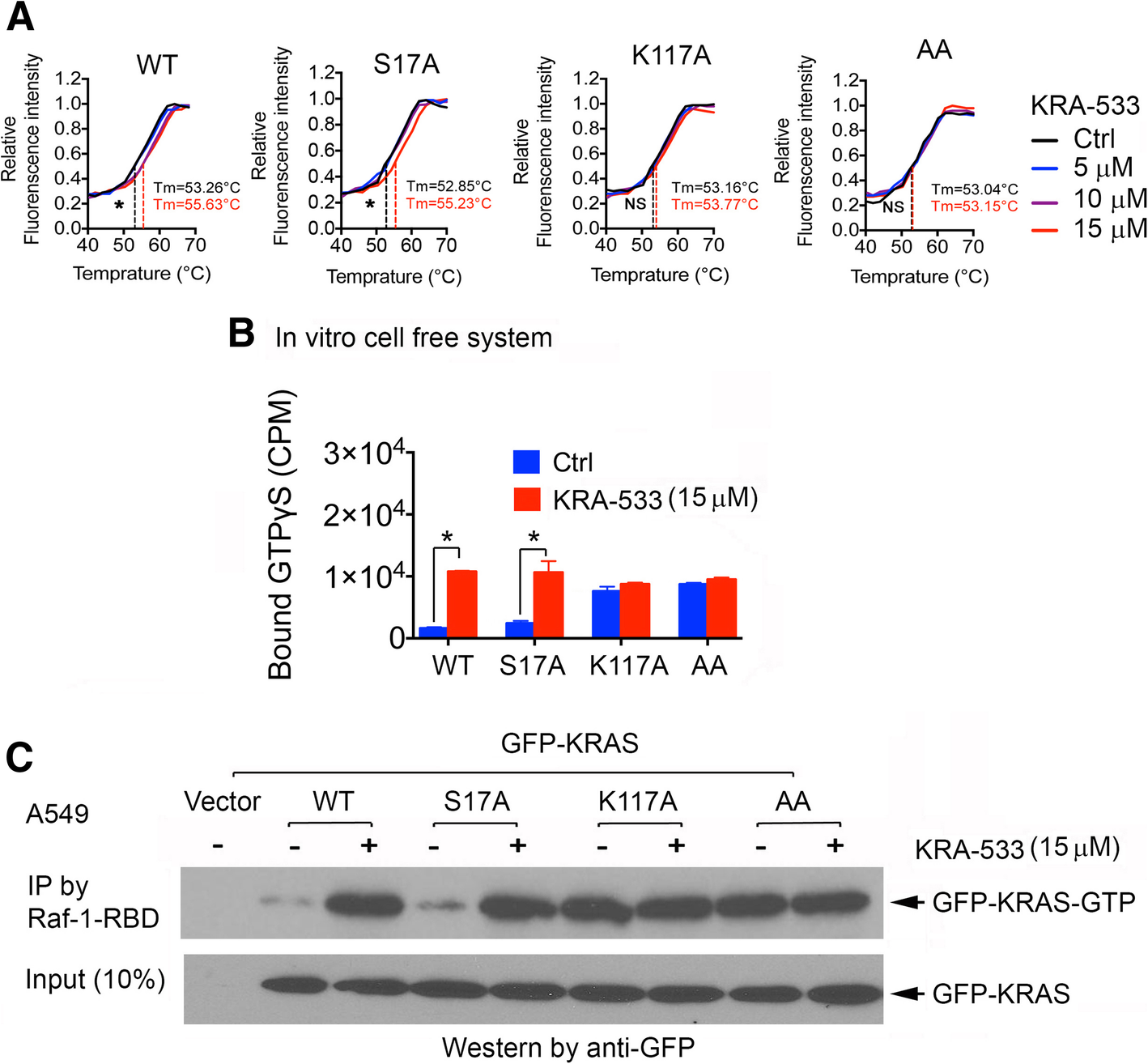 Small Molecule KRAS Agonist for Mutant KRAS Cancer Therapy