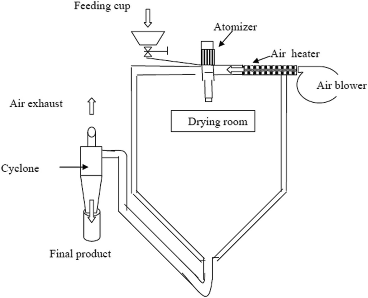 Fatty acids characterization and oxidative stability of spray dried on