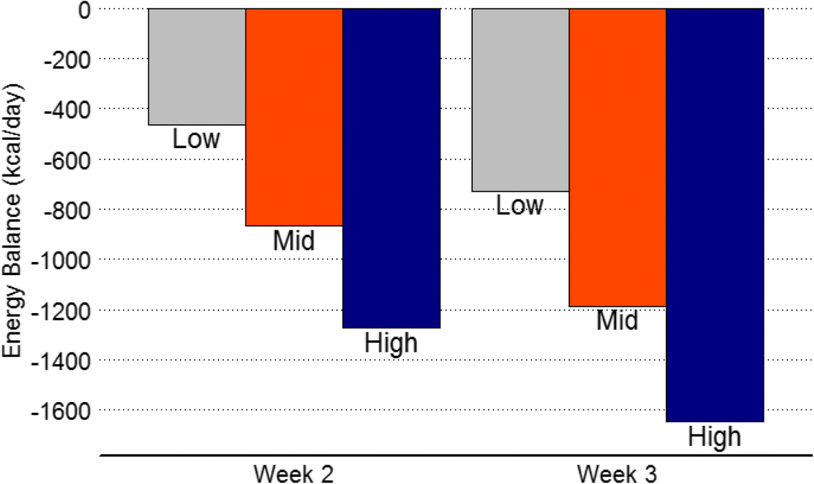 Estimation of energy balance and training volume during Army