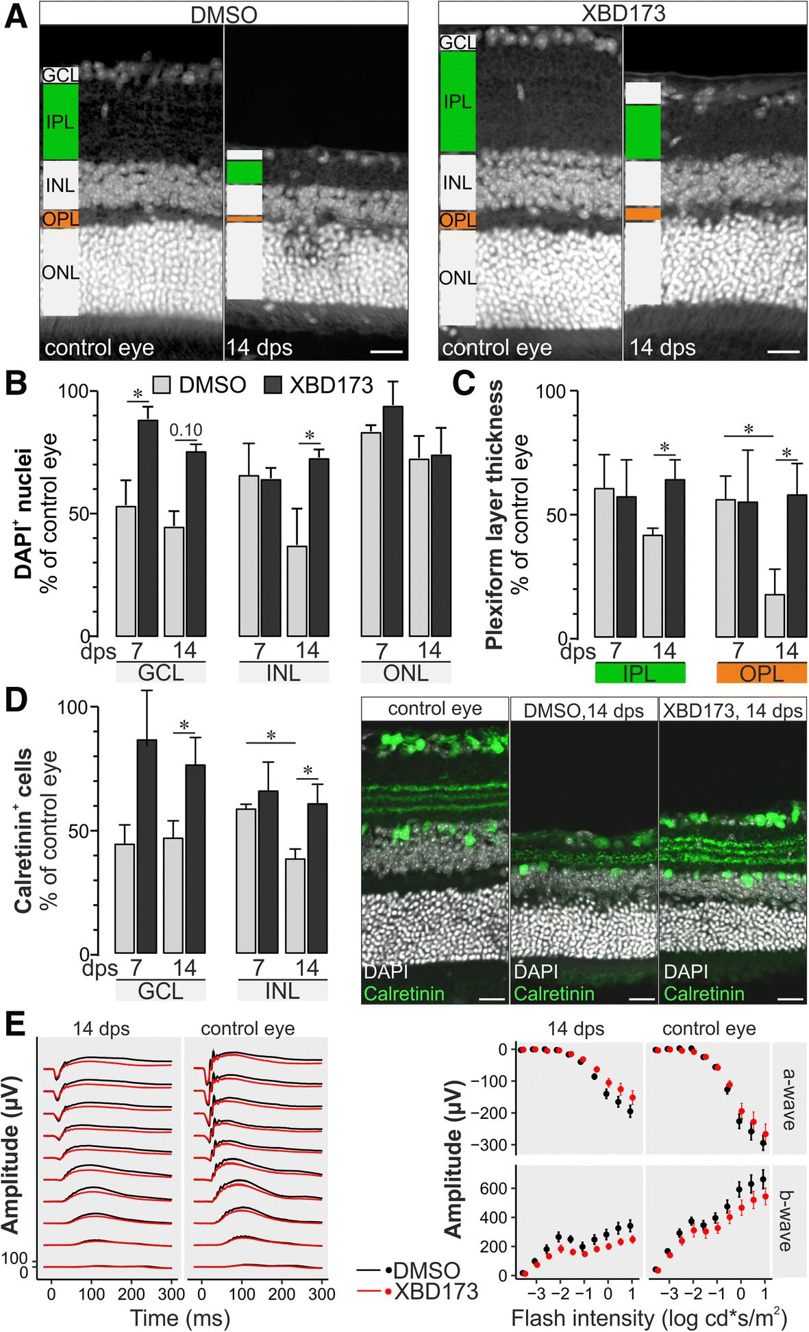 The agonistic TSPO ligand XBD173 attenuates the glial response